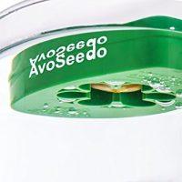 kit coltivazione avocado 03
