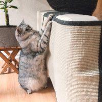 copridivano tiragraffi per gatti – copertura antigraffio divano 01