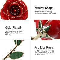 idea regalo romantico – rosa stabilizzata 02